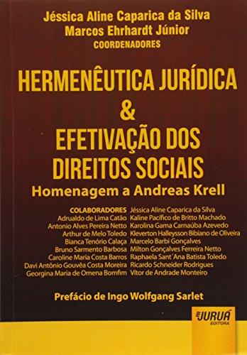 Hermenêutica Jurídica & Efetivação dos Direitos Sociais - Homenagem a Andreas Krell - Prefácio de Ingo Wolfgang Sarlet