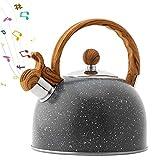 Tea Kettle, Stainless Steel Whistle Water Kettle with Anti Heat Wooden Handle, Splash Galaxy...