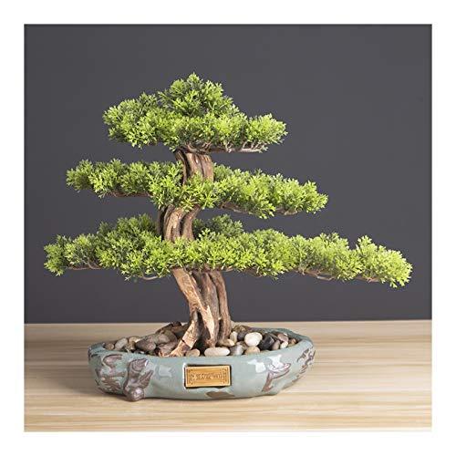 """árbol de pino artificial artificial bonsai Realista Faux Bonsai Tree, Plant, Pote redondo de cerámica negro y guijarros Decoración de escritorio Regalos de novedad (H14.2 """") Planta de bonsái ficus par"""