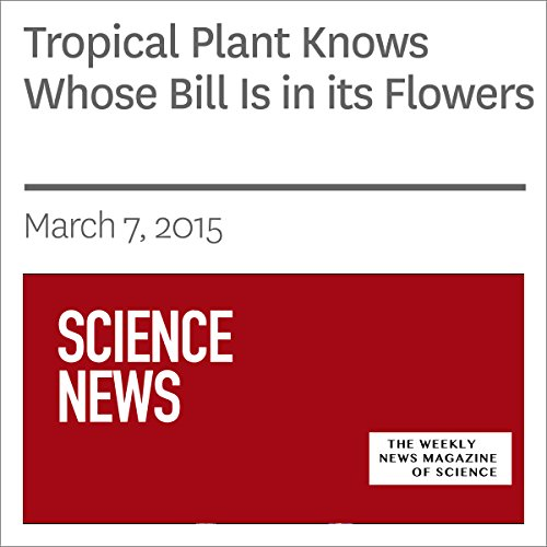 Tropical Plant Knows Whose Bill Is in its Flowers audiobook cover art