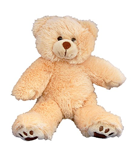 Recordable 8' Plush Furry the Brown Bear w/20 Second Digital Recorder for Special Messages, Rymes or Songs