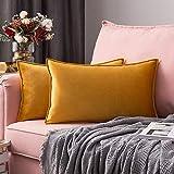 MIULEE Housse de Coussin en Velours Décorative Canapé Bordure Taie d'oreiller Super Doux Decoration Maison Salon Chambre pour...