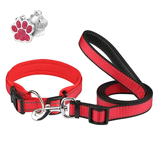 Collare Per Cani Con Guinzaglio Etichetta Regolabile Riflettente Neoprene Imbottitura Taglia Grande Media Piccola - Rosso - S
