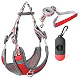 Dog Vest Harness and Leash Set with Handle Step-in Dog Harness Adjustable 3M Reflective Breathable Comfortable Quick Fit & Easy Walk for Small Medium Dog and Cat