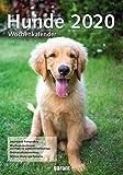 Wochenkalender Hunde 2020