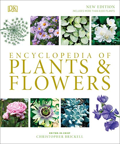 Compare Textbook Prices for Encyclopedia of Plants and Flowers 4 Edition ISBN 9781465485038 by Brickell, Christopher
