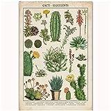 Affiches et gravures Cactus chauds Succulentes Cuisine Vintage Paysage Accueil Art Affiche Toile Peinture Décor À La Maison-50x70 cm Sans Cadre