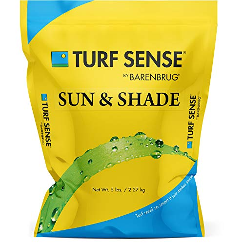 Barenbrug 25619 Turf Sense Grass Seed Grows in Areas of Sun and Partial Shade, 5 LB Bag
