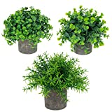 UltraOutlet 3-Pack Small Potted Artificial Plants Mini Faked Plants in Cement Pulp Pot Green Plastic Eucalyptus, Rosemary, and Boxwood Plants for Home, Bathroom and Office Decoration