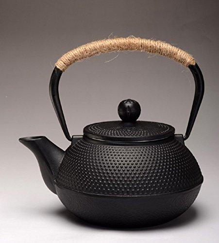 GAOJIAN Théière en Fonte Set Thé Pot Tetsubin Bouilloire Verres 800 ML Kung Fu Infuseurs Métal Filet Net Outils de Cuisson