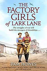 book cover for the factory girls of Lark Lane, books set in another country