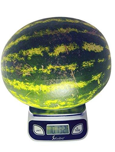 Digital Food Scale/Kitchen Scale/Postal Scale