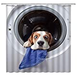 LRSJD Duschvorhang mit niedlichem H&emotiv & lustigem Welpenmotiv in der Waschmaschine, mit lustigem Tiermotiv, 183 x 183 cm, mit Haken, grau-blau