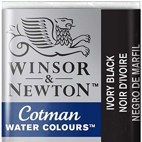 Winsor & Newton 301696 Cotman Colori Acquerello, Viridian, Multicolore (Avorio/Black), 1.9x1.6x1.1 cm