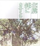 [映画パンフレット]北辰斜にさすところ(2007年)/三國連太郎 緒形直人 林隆三 北村和夫 坂上二郎