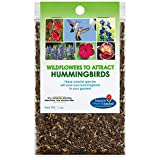 Hummingbird Nectar Wildflower Seeds Bulk Open-Pollinated Wildflower Seed Mix Packet, Non-GMO, NO FILLERS, Annual, Perennial Wildflower Seeds Year Round Planting - 1 oz