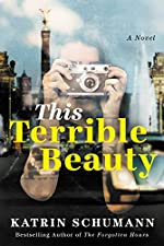 This Terrible Beauty: A Novel