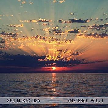 SER Music USA Ambience, Vol. 1
