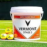 Vermont Balles de Tennis | Seau de Balles Homologués par la ITF pour Mini Tennis/Entraînement (pour Toutes Les Surfaces) (Niveau 2 - Orange)