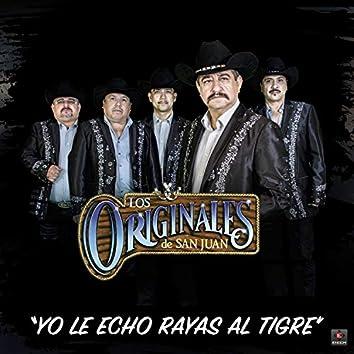 Yo Le Echo Rayas Al Tigre