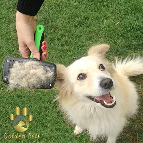 Golden Pets selbstreinigende Hundebürste & Katzenbürste | ALL-IN-ONE-Pflege für kurz-Langhaar geeignet | Einfache Reinigung durch EASY-CLEAN-Funktion | TOP Fellpflege für Ihren tierischen Freund - 2