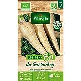 Vilmorin - Sachet graines Panais de Guernesey BIO