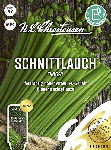 Schnittlauch Twiggy, feinröhrig, hoher Vitamin-C-Gehalt, Samen