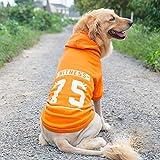 QNMM Ropa para Perros Grandes Sudaderas con Capucha para Perros Grandes Abrigos para Perros Grandes Suéteres para Perros medianos a Grandes,Naranja,2XL