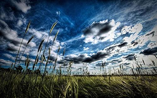 Rompecabezas De Rompecabezas para Adultos, 1000 Piezas, Cielo Azul, Nubes Blancas, Malezas, Arte para NiñOs, Bricolaje, Juego De Ocio, Juguete Divertido, Regalo, Adecuado para Amigos Familiares
