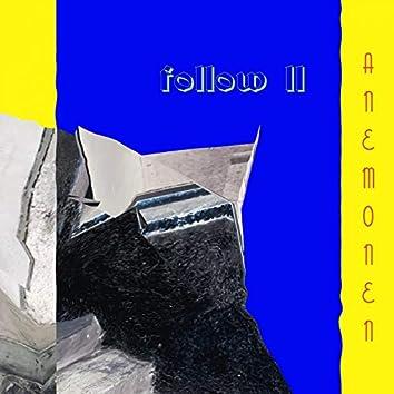 Follow II