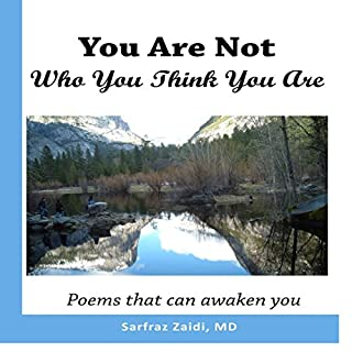 You Are Not Who You Think You Are audiobook cover art