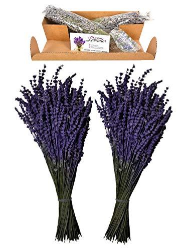 Lavender Bundles%100 Fresh Dried Natural Lavender Flowers for Home Fragrance, Home Decoration, Photo Props, 2 Bundles, Car Smell