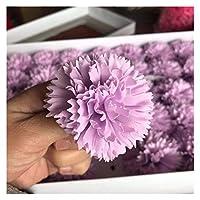 アートフラワー 6 * 5cmヘッド/ 15ピース保存カーネーションヘッド人工石鹸フラワーカーネーション、母親の日のギフト、DIYブーケのための永遠のピンクのバラ (Color : 15pcs)