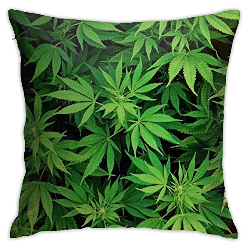 NHJYU Soft Throw Pillow Case 18' X 18' Weeds Pillowcase Modern Design,Square Throw Covers,Decorative Cushion for Sofa Couch Car