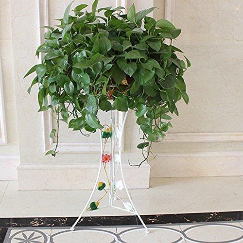Porte-fleurs multifonctions Porte-fleurs en fer Pots de sol intérieurs et extérieurs Salon étagère d'orchidée turquoise verte (0,8 m) (blanc) Applicable aux supports de fleurs d'intérieur et d