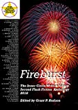 Fireburst: The Inner Circle Writers' Group Second Flash Fiction Anthology 2018 (English Edition)