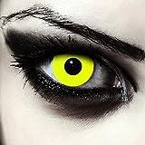 Designlenses, Dos lentillas de color amarillo totalmente para Halloween exorcista zombie d...