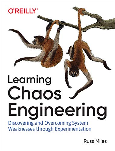 Learning Chaos Engineering: Discovering and Overcoming System Weaknesses Through Experimentation (English Edition)