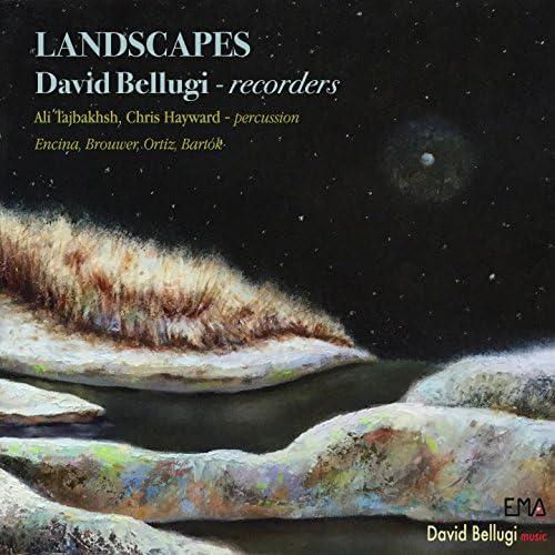David Bellugi, Bellugi Ensemble