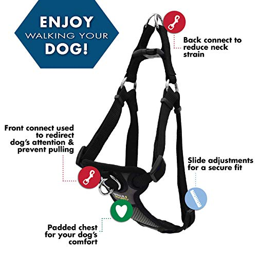 Walk Right Dog Harness