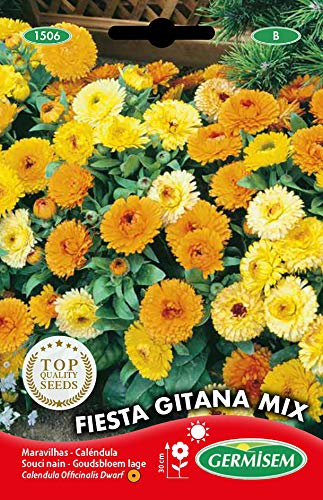 Germisem Fiesta Gitana Mix Semillas de Caléndula 1.25 g (EC1506)