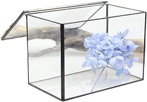 DingSheng Square Bureau Cuboïde En Verre Clair Terrarium Boîte Géométrique Avec Couvercle Table Plante Succulente Air Fougère Spike Moss Vivant Noir Planteur Pot De Fleurs 21 * 12 * 14CM