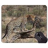 ロックエッジ付きマウスパッド、南アフリカ猫ファミリーヒョウマウスパッド