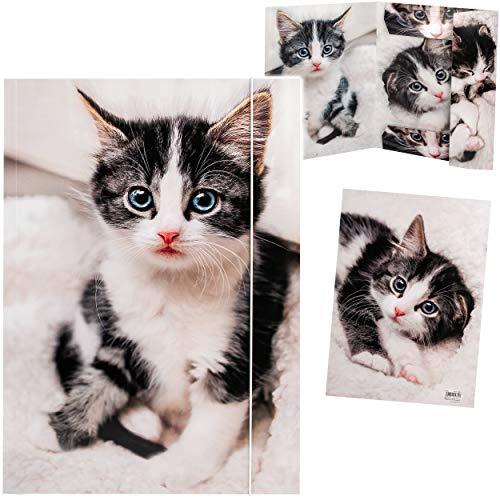 alles-meine.de GmbH XXL _ A3 - Zeichenmappe / Sammelmappe _ Motivwahl _ süße Katze - Ordner - 44 cm - Mappe für Hefte Zeitschriften Zeichnungen - Gummizugmappe / Kinder Erwachsen..