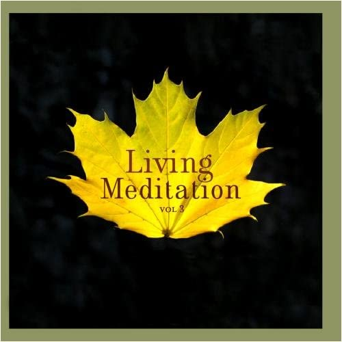 Living Meditation Vol III Guided Relaxations With David Harshada Wagner product image