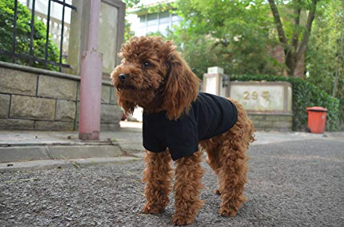Lovelonglong 2019 Pet Clothing Dog Costumes Basic Blank T-Shirt Tee Shirts for Small Dogs Black L