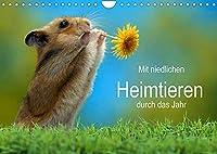 Mit niedlichen Heimtieren durch das Jahr (Wandkalender 2022 DIN A4 quer): Niedliche Haustiere verschiedener Arten begleiten sie durchs Jahr. (Monatskalender, 14 Seiten )