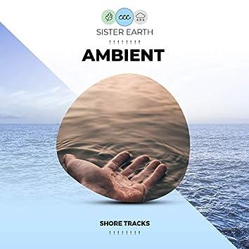 ! ! ! ! ! ! ! ! Ambient Shore Tracks ! ! ! ! ! ! ! !