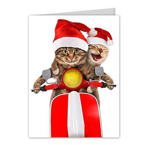 Scooter Cats Holiday Card Pack / 25 Animal Humor Greeting Cards With Envelopes/Funny Scooter Cat Santa Hat Design Featuring Christmas Message Inside