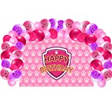 Dog Patrol Birthday Party Supplies Decorations, Backdrop With Balloons Kit For Girls Paw Photo Background